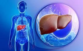 FATTY LIVER (NAFLD) (ફેટી લીવર) Image