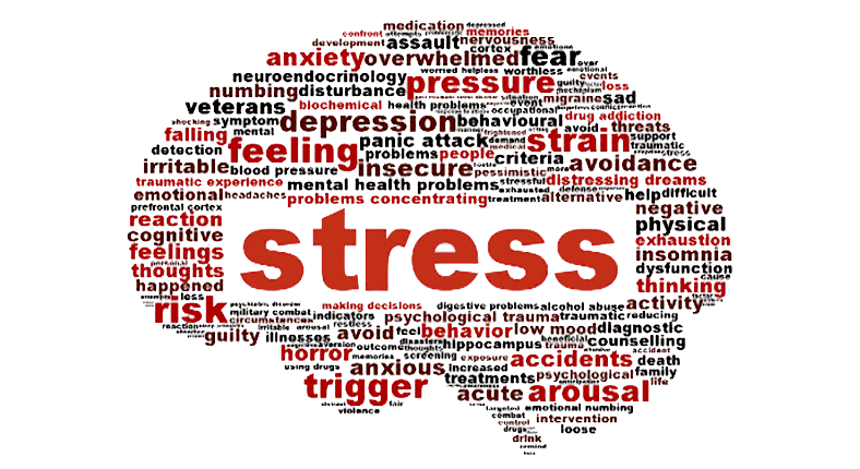 STRESS: EFFECTS ON YOUR BODY AND MIND Image